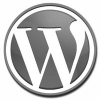 WordPress Stats Plugin icon