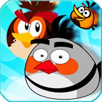 Crazy Birds Breaker:Bricks breaker challenge android app icon