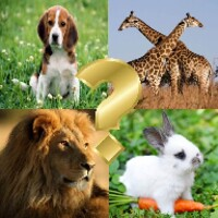 Guess the animals android app icon