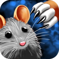 Cat Mouse Toy android app icon