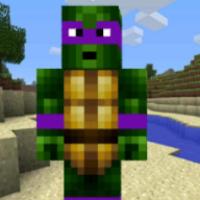 Turtle Ninja Run android app icon