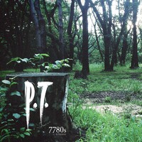 P.T. for PC icon