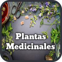 Plantas Medicinales y Curativas icon
