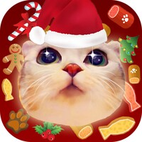 Adorable Cat Cat  android app icon