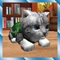 Cute Pocket Cat 3D android app icon