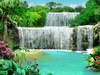 Herunterladen Free Living Waterfall 3 Windows
