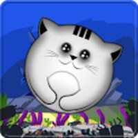 Tap the Cat android app icon