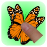 TouchButterfly android app icon