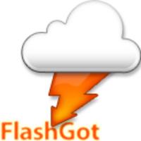 FlashGot icon