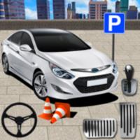 Advance Car Parking icon