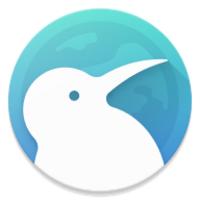 Kiwi Browser icon