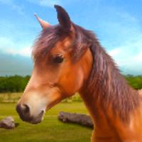 Run Horse Run android app icon