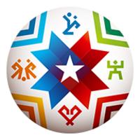 Copa America 2015 icon
