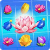 Blossom Splash android app icon
