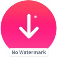 Video Downloader For Tik Tok 27 0 Untuk Android Unduh
