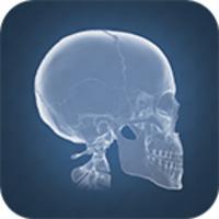 Anatomy 4D icon