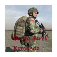 Bordo Bereli android app icon