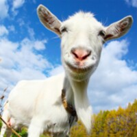 Crazy Goat FREE android app icon