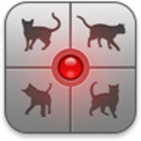 Human To Cat Translator 1 10 For Android Download