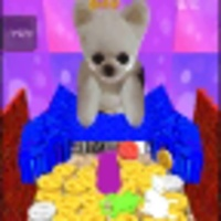 Coin Dog android app icon