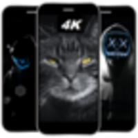 Black Wallpaper Pro 4K