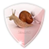 SlowDNS icon