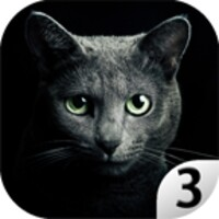 Find a cat 3 android app icon