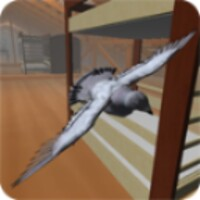 Roofy Bird android app icon
