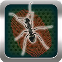 Kill Ants Game android app icon