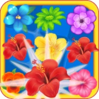 Blossom Fever android app icon