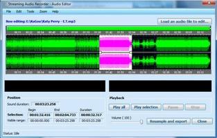 Streaming Audio Recorder screenshot 2
