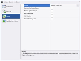 Gadwin PrintScreen screenshot 5