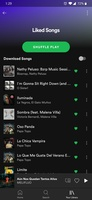 Spotify screenshot 3