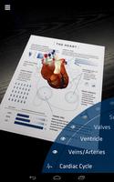 Anatomy 4D screenshot 6