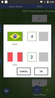 Copa America 2019 Draw Simulator screenshot 6