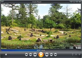 Zoom Player screenshot 2