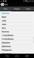 Bible Offline screenshot 8
