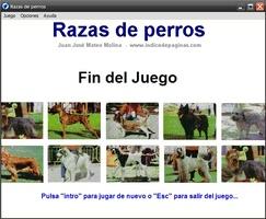 Razas de perros screenshot 3
