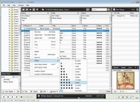 MusicBee screenshot 4