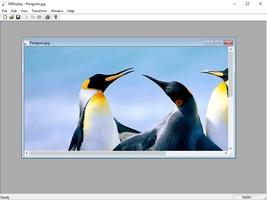 ImageMagick screenshot 5