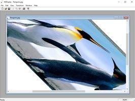 ImageMagick screenshot 3