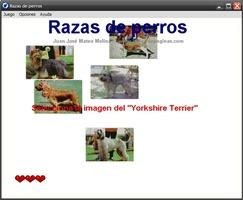 Razas de perros screenshot 2