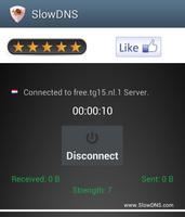 SlowDNS screenshot 7