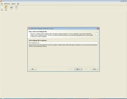 WebSite Auditor screenshot 2