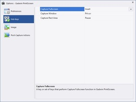 Gadwin PrintScreen screenshot 6