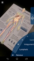 Anatomy 4D screenshot 3