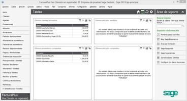 Sage FacturaPlus Flex screenshot 3