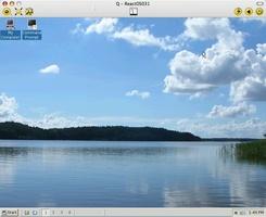 Q Emulator screenshot 2