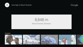 Google app for Android TV screenshot 5