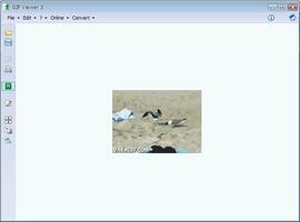 GIF Viewer screenshot 3